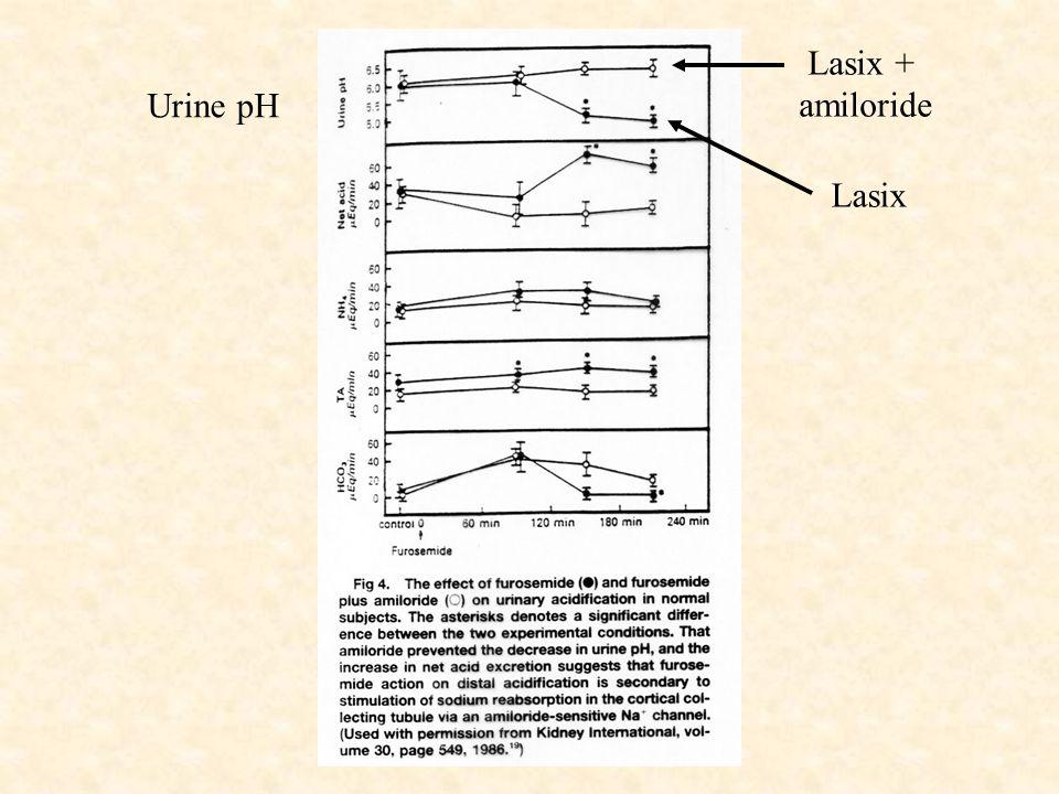 Urine pH Lasix + amiloride Lasix