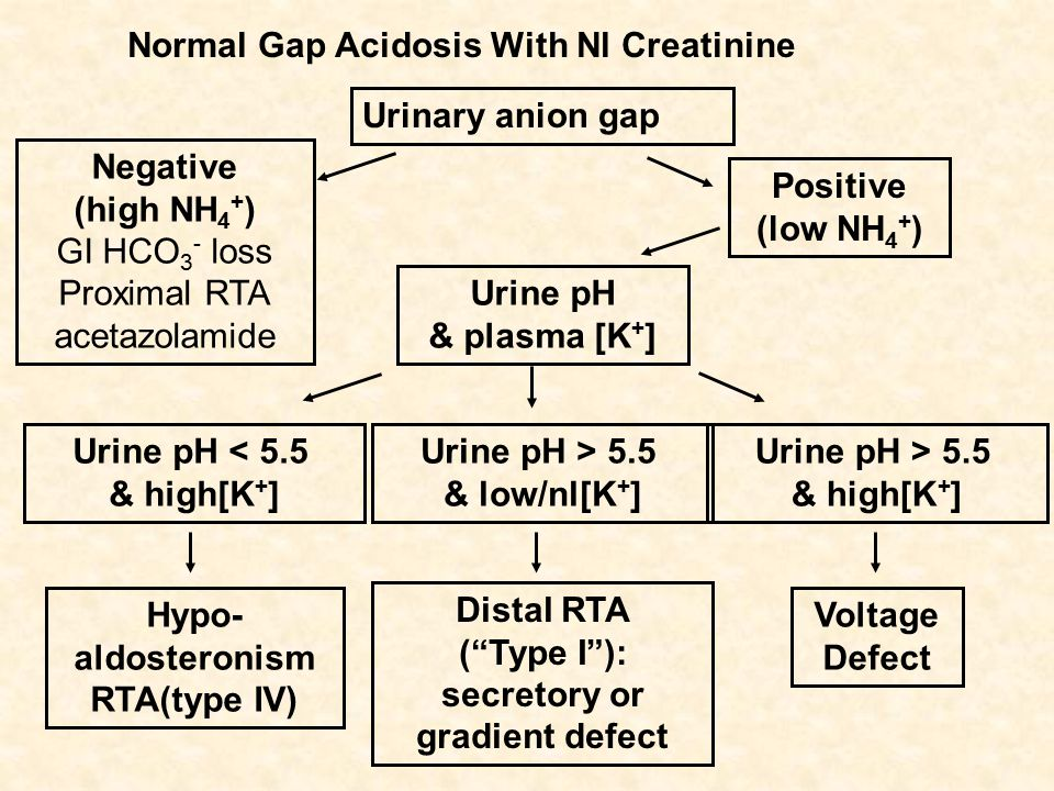 Normal Gap Acidosis With Nl Creatinine Urinary anion gap Negative (high NH 4 + ) GI HCO 3 - loss Proximal RTA acetazolamide Positive (low NH 4 + ) Urine pH & plasma [K + ] Urine pH < 5.5 & high[K + ] Hypo- aldosteronism RTA(type IV) Urine pH > 5.5 & low/nl[K + ] Distal RTA ( Type I ): secretory or gradient defect Voltage Defect Urine pH > 5.5 & high[K + ]