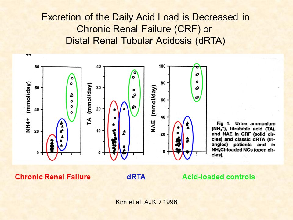Excretion of the Daily Acid Load is Decreased in Chronic Renal Failure (CRF) or Distal Renal Tubular Acidosis (dRTA) Kim et al, AJKD 1996 Chronic Renal Failure dRTA Acid-loaded controls