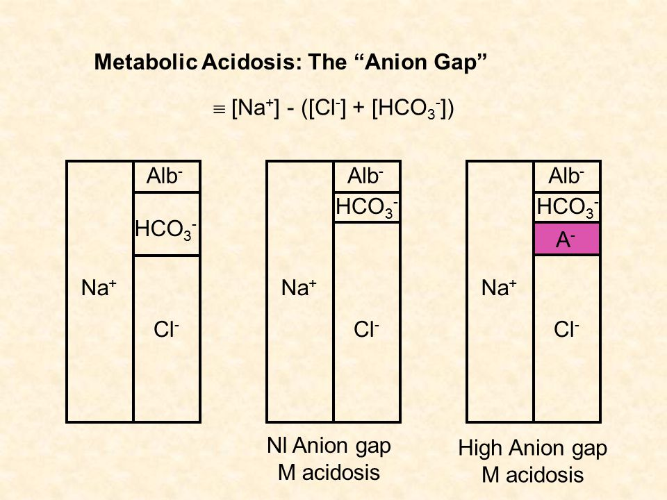 "Metabolic Acidosis: The ""Anion Gap"" Na + Cl - HCO 3 - Alb - Na + Cl - HCO 3 - Alb -  [Na + ] - ([Cl - ] + [HCO 3 - ]) Nl Anion gap M acidosis Na + Cl"