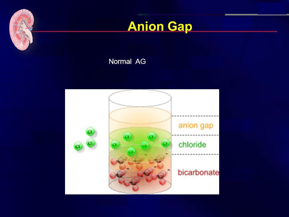 Anion Gap Normal AG