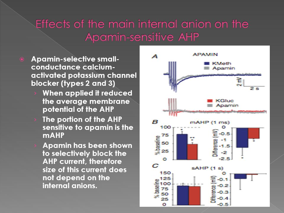  Apamin-selective small- conductance calcium- activated potassium channel blocker (types 2 and 3) › When applied it reduced the average membrane pote