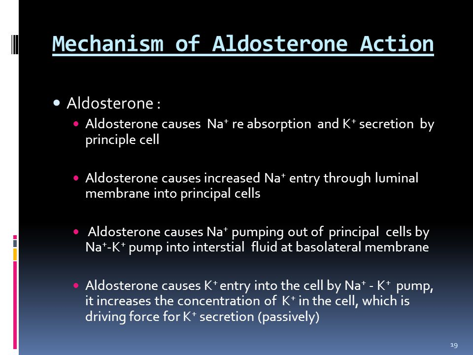 Mechanism of Aldosterone Action Aldosterone : Aldosterone causes Na + re absorption and K + secretion by principle cell Aldosterone causes increased Na + entry through luminal membrane into principal cells Aldosterone causes Na + pumping out of principal cells by Na + -K + pump into interstial fluid at basolateral membrane Aldosterone causes K + entry into the cell by Na + - K + pump, it increases the concentration of K + in the cell, which is driving force for K + secretion (passively) 19