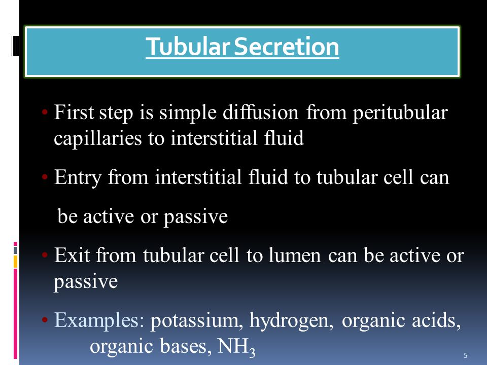 Tubular Secretion 5 First step is simple diffusion from peritubular capillaries to interstitial fluid Entry from interstitial fluid to tubular cell can be active or passive Exit from tubular cell to lumen can be active or passive Examples: potassium, hydrogen, organic acids, organic bases, NH 3
