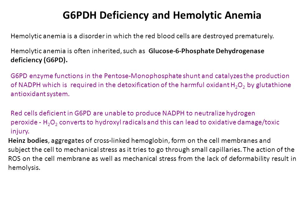 G6PDH Deficiency and Hemolytic Anemia Hemolytic anemia is a disorder in which the red blood cells are destroyed prematurely.