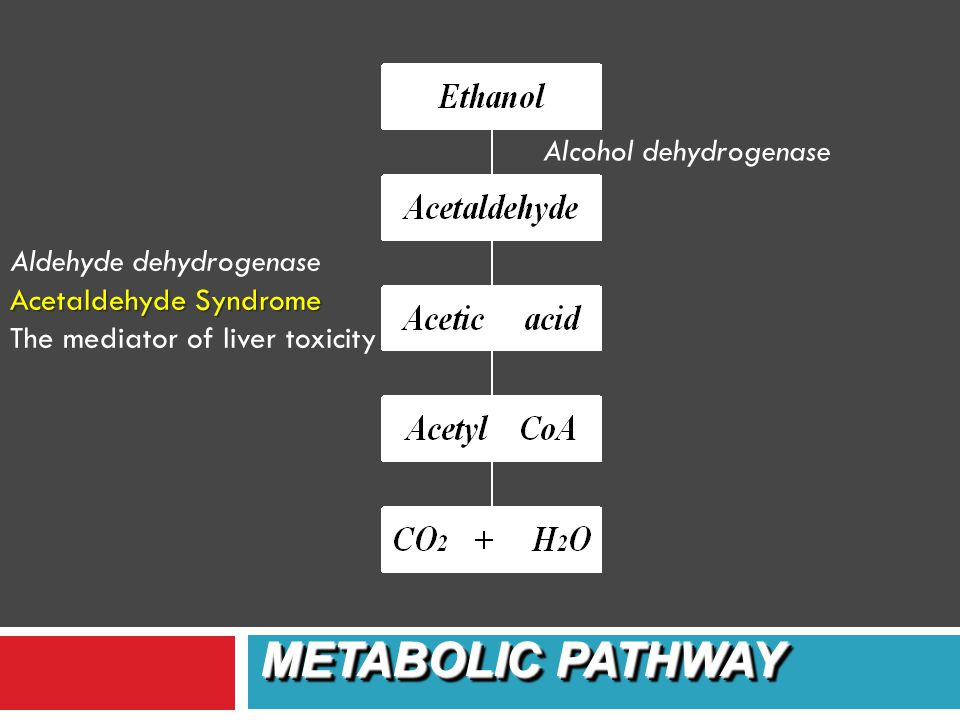 90% metabolized in the liver by one of the two pathways: 1. cytosol: –alcohol dehydrogenase –aldehyde dehydrogenase 2. microsomal alcohol oxidizing sy