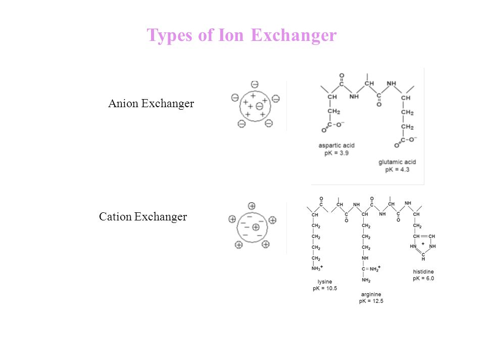 Types of Ion Exchanger Anion Exchanger Cation Exchanger