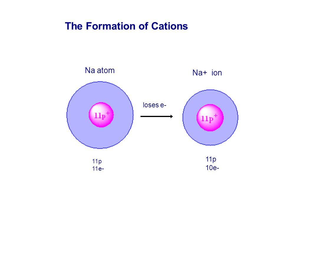 The Formation of Cations Na atom Na+ ion loses e- 11p 11e- 11p 1 0e -
