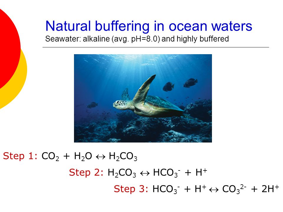 Buffering in your Blood  Your blood can absorb acids and bases produced in biologic rxns w/out changing its pH  Constant pH is vital for cell survival