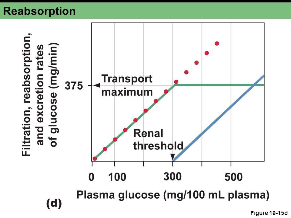 Reabsorption Figure 19-15d