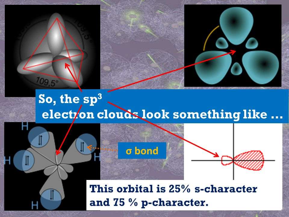 So, the sp 3 electron clouds look something like … This orbital is 25% s-character and 75 % p-character.
