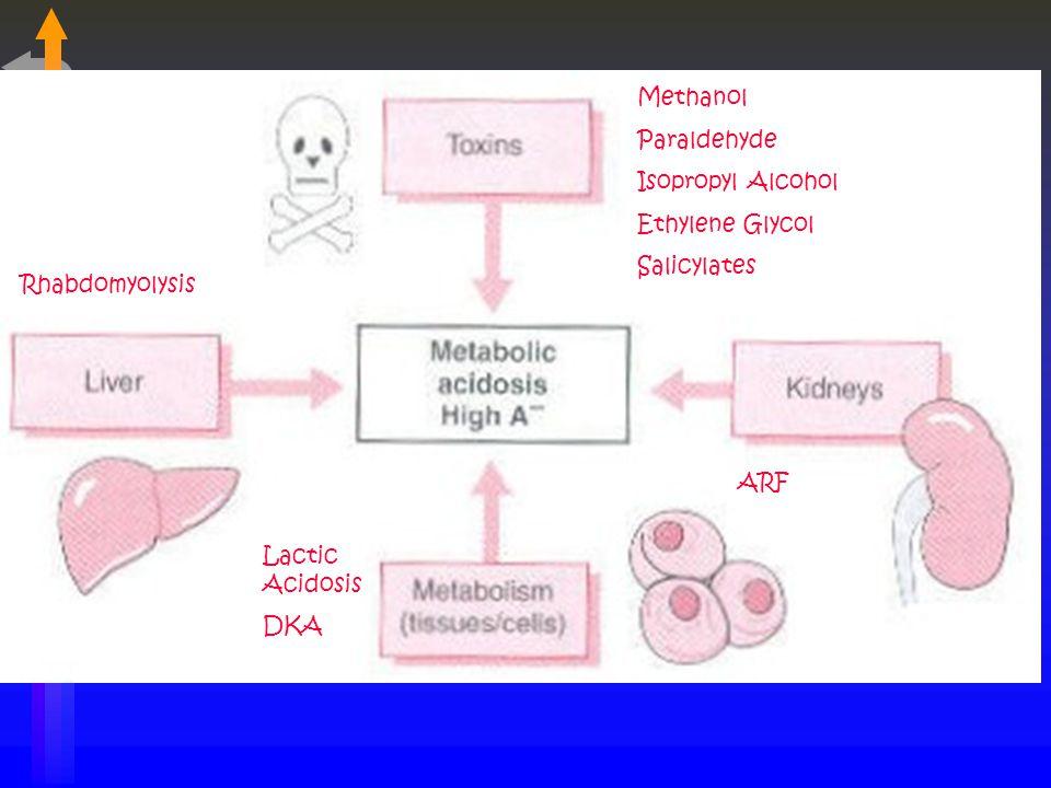 Methanol Paraldehyde Isopropyl Alcohol Ethylene Glycol Salicylates ARF Lactic Acidosis DKA Rhabdomyolysis