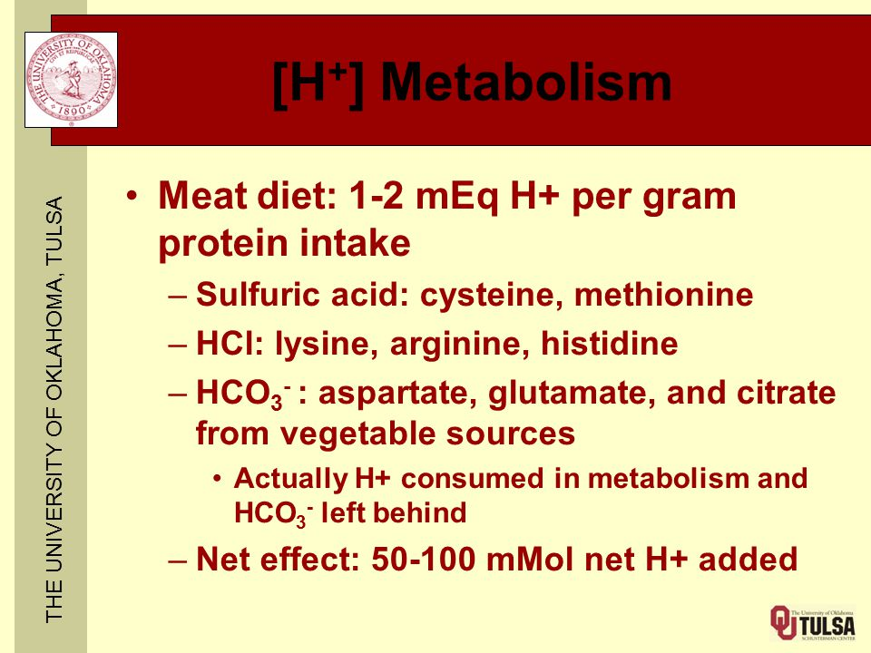 THE UNIVERSITY OF OKLAHOMA, TULSA [H + ] Metabolism Meat diet: 1-2 mEq H+ per gram protein intake –Sulfuric acid: cysteine, methionine –HCl: lysine, arginine, histidine –HCO 3 - : aspartate, glutamate, and citrate from vegetable sources Actually H+ consumed in metabolism and HCO 3 - left behind –Net effect: 50-100 mMol net H+ added