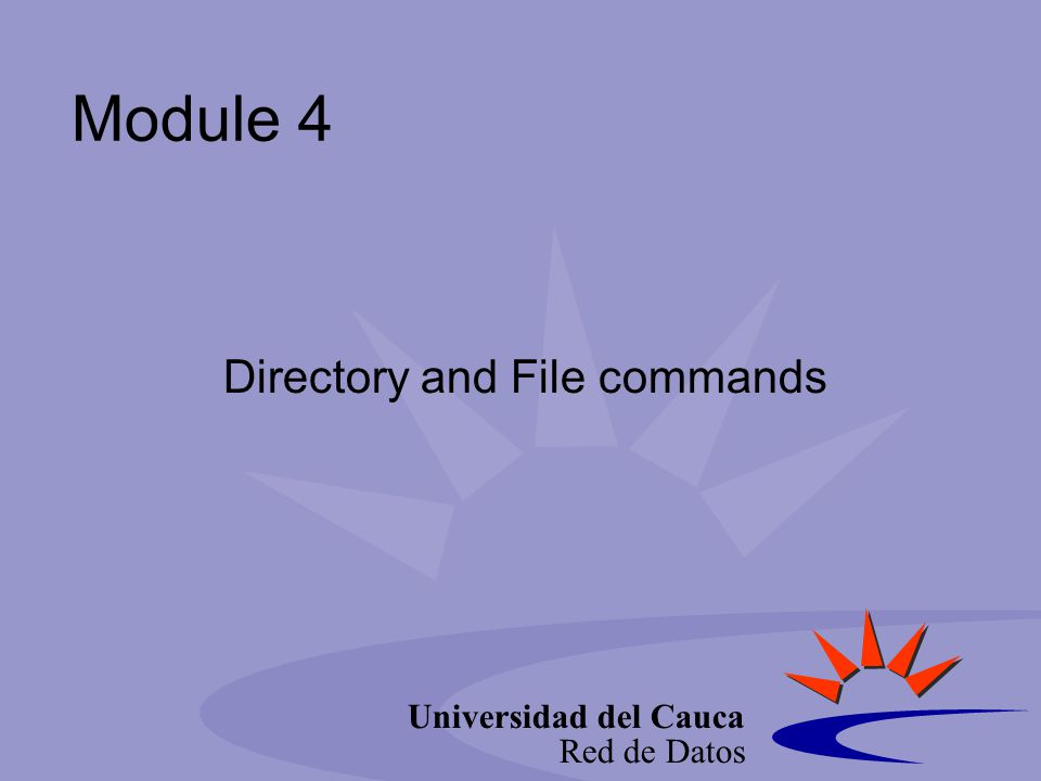 Universidad del Cauca Red de Datos Use control characters EraseControl+HBackspace erases characters IntrControl+CInterrupt: Cancel the current operation and redisplay the command-line prompt.