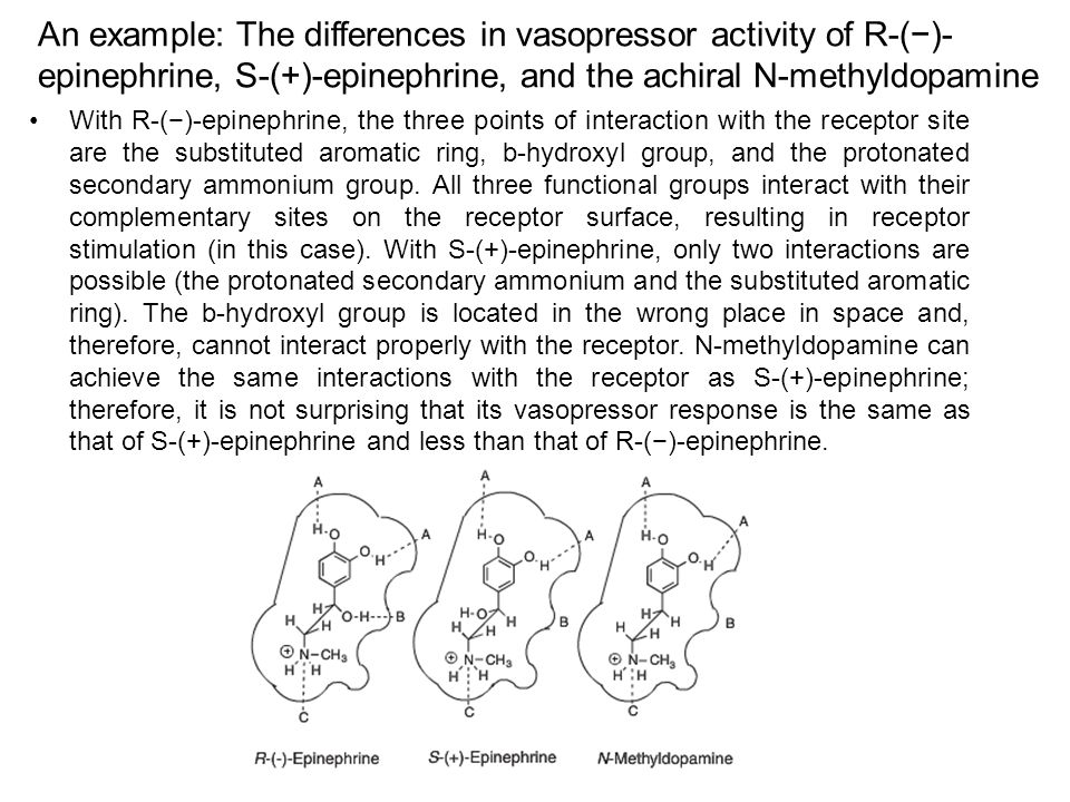An example: The differences in vasopressor activity of R-(−)- epinephrine, S-(+)-epinephrine, and the achiral N-methyldopamine With R-(−)-epinephrine,