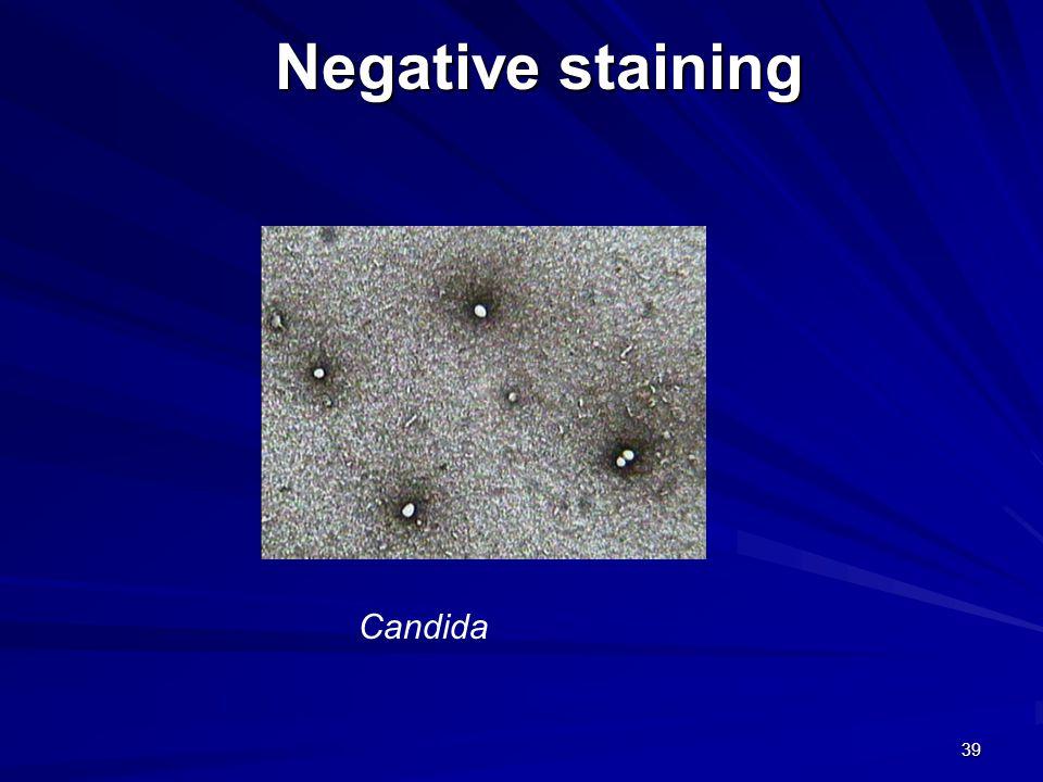 39 Negative staining Candida