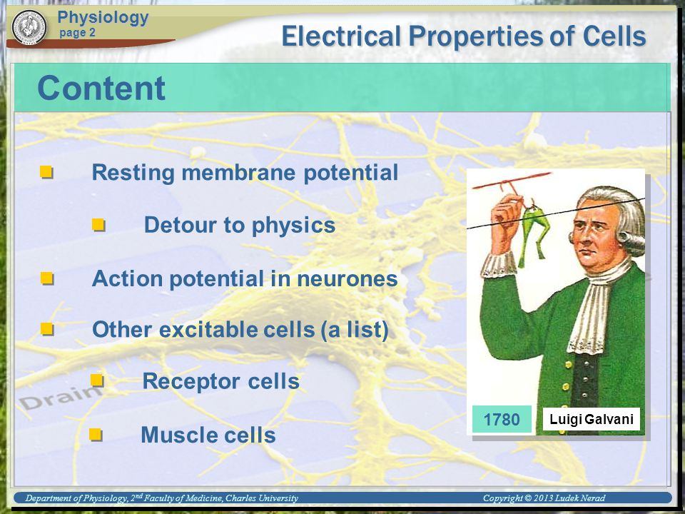 Physiology page 2 Content Resting membrane potential Detour to physics Other excitable cells (a list) Action potential in neurones Muscle cells Electrical Properties of Cells Receptor cells 1780 Department of Physiology, 2 nd Faculty of Medicine, Charles University Copyright © 2013 Ludek Nerad Luigi Galvani