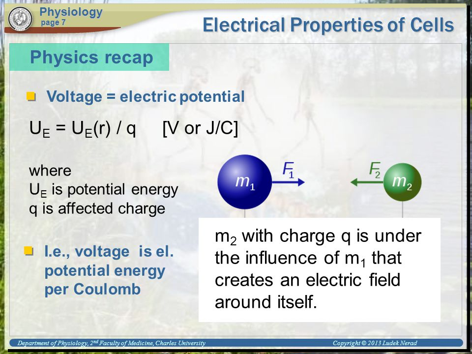 Electrical Properties of Cells Physiology page 7 Physics recap Voltage = electric potential U E = U E (r) / q [V or J/C] where U E is potential energy q is affected charge m 2 with charge q is under the influence of m 1 that creates an electric field around itself.