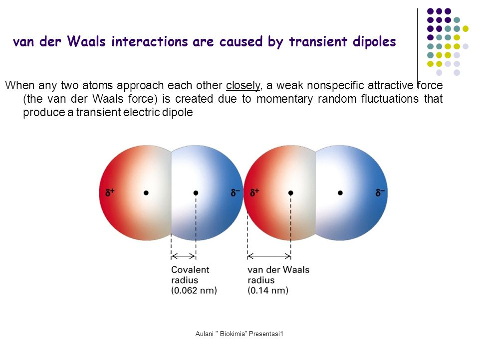 Aulani Biokimia Presentasi1 van der Waals interactions are caused by transient dipoles When any two atoms approach each other closely, a weak nonspecific attractive force (the van der Waals force) is created due to momentary random fluctuations that produce a transient electric dipole