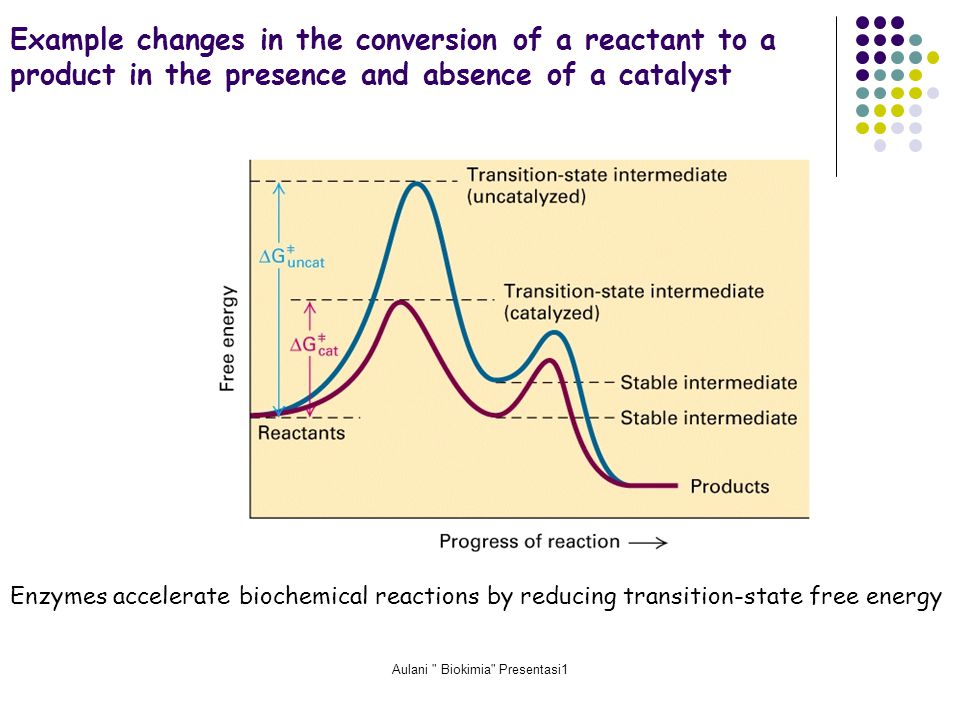 Aulani Biokimia Presentasi1 Example changes in the conversion of a reactant to a product in the presence and absence of a catalyst Enzymes accelerate biochemical reactions by reducing transition-state free energy