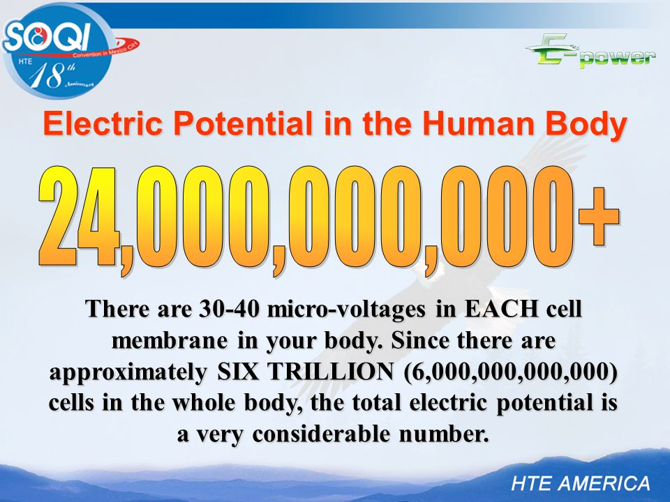 Electric Potential in the Human Body There are 30-40 micro-voltages in EACH cell membrane in your body. Since there are approximately SIX TRILLION (6,