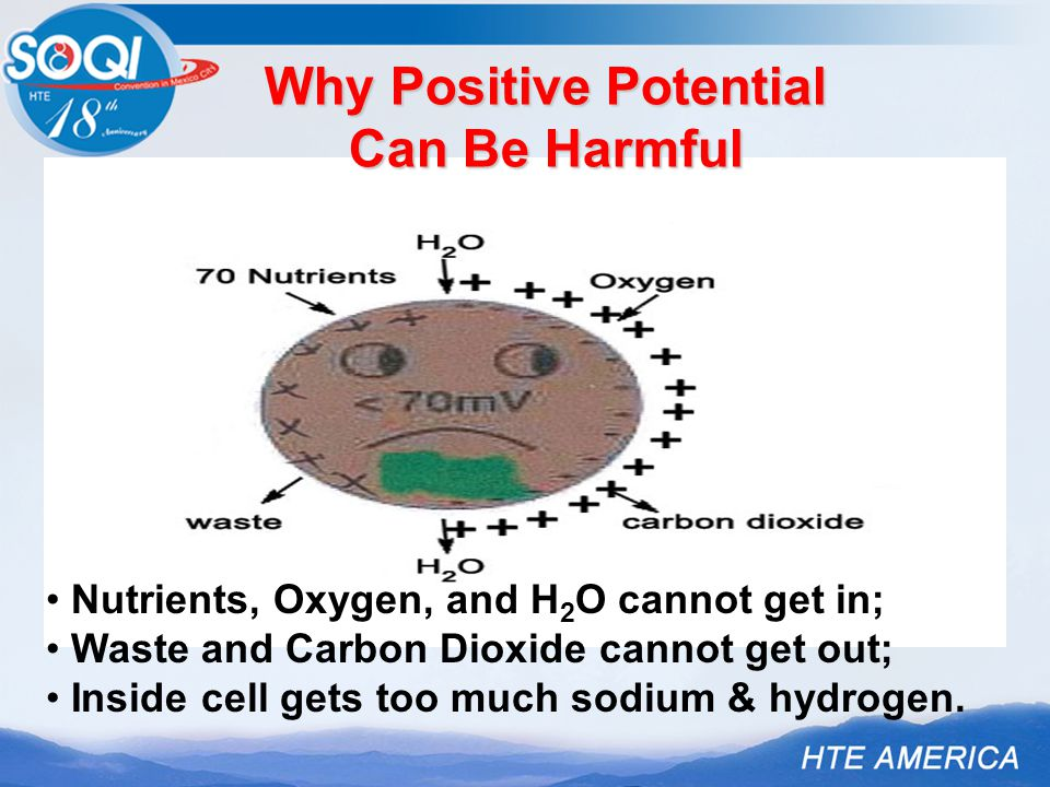 Nutrients, Oxygen, and H 2 O cannot get in; Waste and Carbon Dioxide cannot get out; Inside cell gets too much sodium & hydrogen.