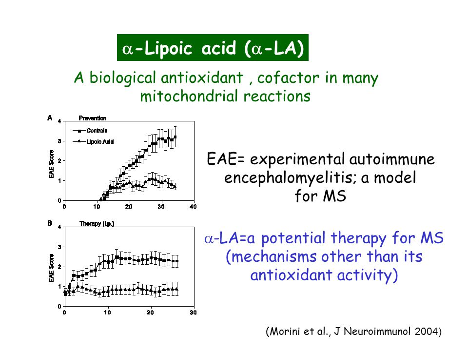  -Lipoic acid (  -LA) A biological antioxidant, cofactor in many mitochondrial reactions EAE= experimental autoimmune encephalomyelitis; a model for