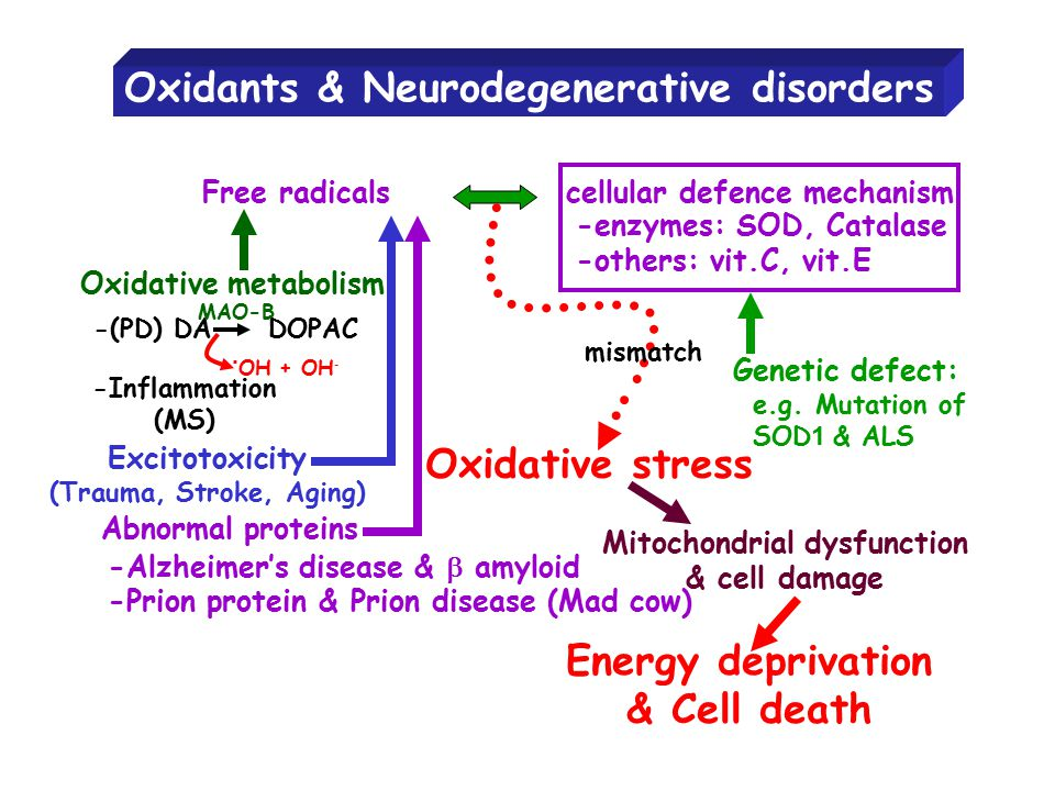 Oxidants & Neurodegenerative disorders Free radicals cellular defence mechanism -enzymes: SOD, Catalase -others: vit.C, vit.E Oxidative metabolism -(P