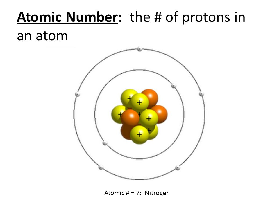 Atomic Number: the # of protons in an atom Atomic # = 7; Nitrogen