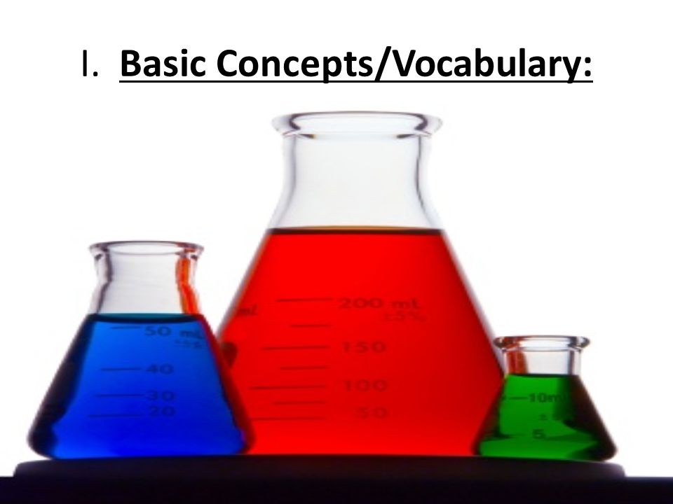I. Basic Concepts/Vocabulary: