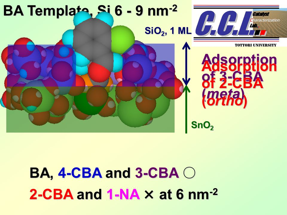 BA Template, Si 6 - 9 nm -2 BA, 4-CBA and 3-CBA ○ 2-CBA and 1-NA × at 6 nm -2 Adsorption of 3-CBA (meta) Adsorption of 2-CBA (ortho) SnO 2 SiO 2, 1 ML