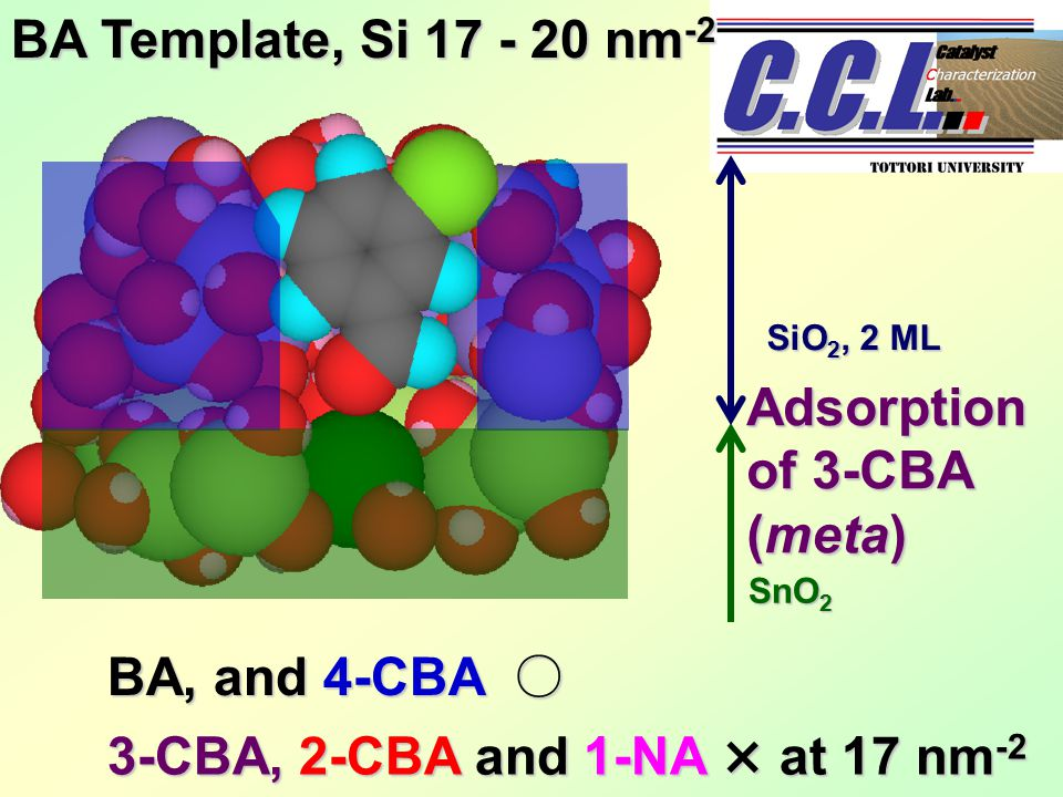 BA Template, Si 17 - 20 nm -2 Adsorption of 3-CBA (meta) BA, and 4-CBA ○ 3-CBA, 2-CBA and 1-NA × at 17 nm -2 SnO 2 SiO 2, 2 ML