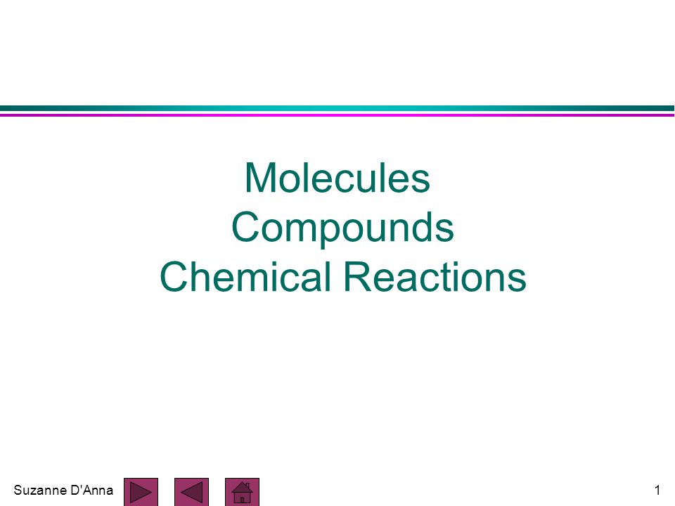 Suzanne D Anna1 Molecules Compounds Chemical Reactions