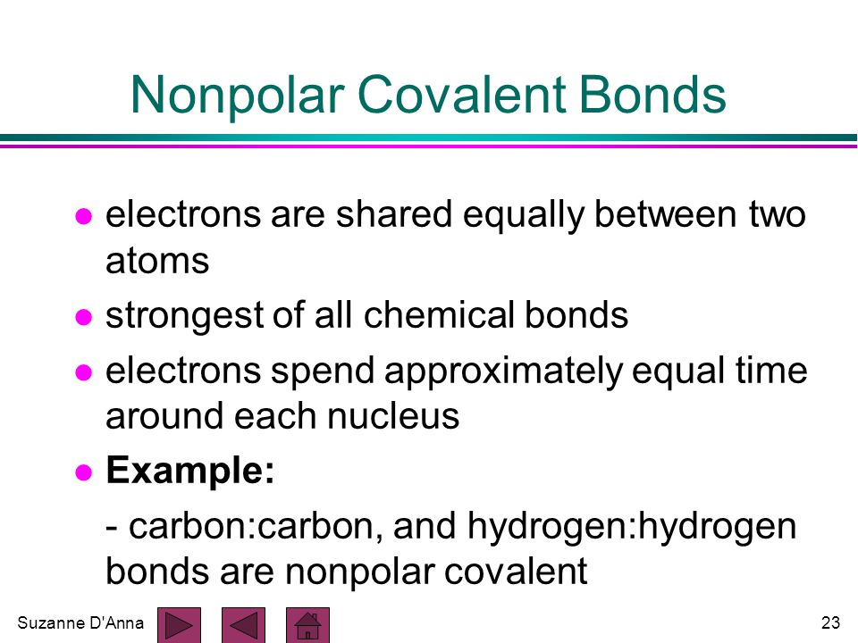 Suzanne D Anna23 Nonpolar Covalent Bonds l electrons are shared equally between two atoms l strongest of all chemical bonds l electrons spend approximately equal time around each nucleus l Example: - carbon:carbon, and hydrogen:hydrogen bonds are nonpolar covalent