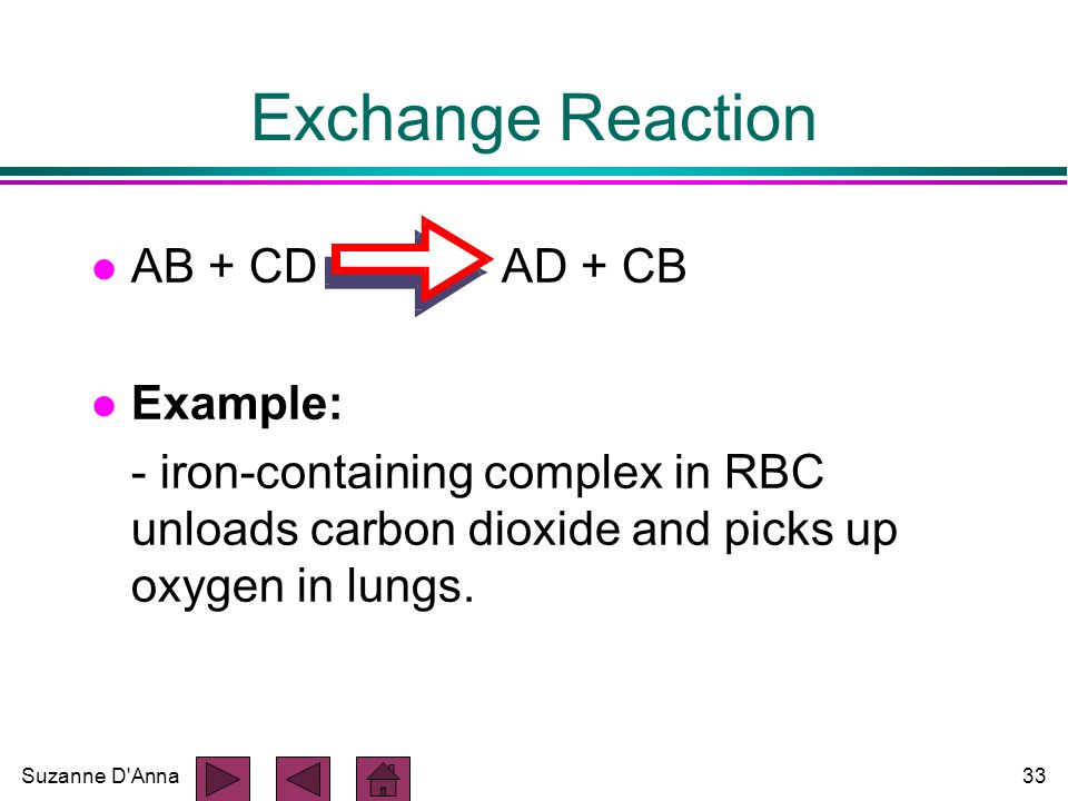 Suzanne D Anna33 Exchange Reaction l AB + CD AD + CB l Example: - iron-containing complex in RBC unloads carbon dioxide and picks up oxygen in lungs.