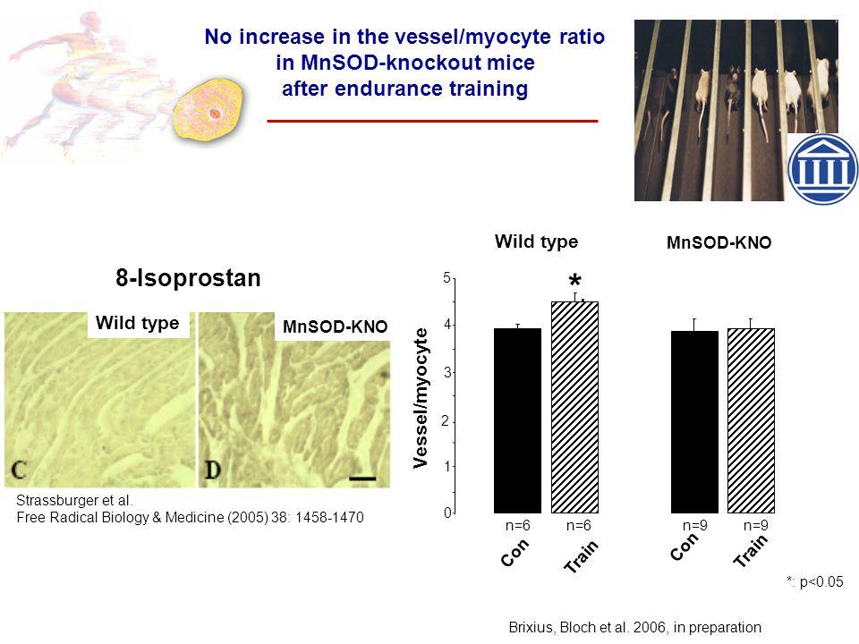 * 0 1 2 3 4 5 n=6 n=6 n=9 n=9 8-Isoprostan Strassburger et al. Free Radical Biology & Medicine (2005) 38: 1458-1470 No increase in the vessel/myocyte