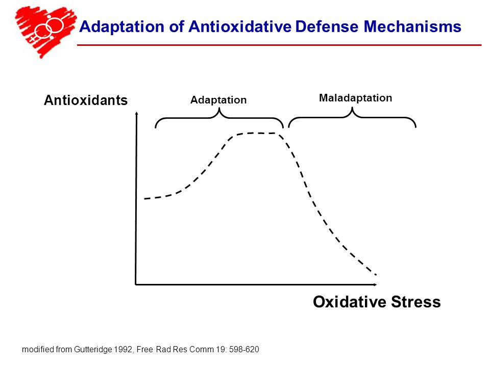 Adaptation of Antioxidative Defense Mechanisms modified from Gutteridge 1992, Free Rad Res Comm 19: 598-620 Adaptation Antioxidants Oxidative Stress Maladaptation