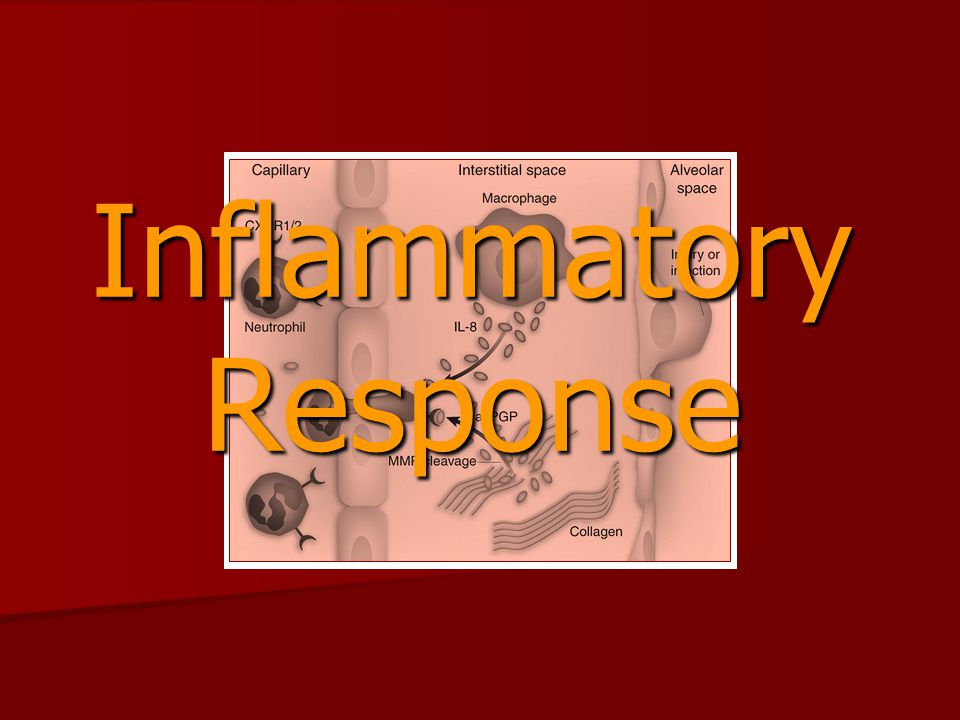 INTERLEUKIN-6 IL-6 is a pluripotent cytokine intimately associated with the inflammatory response to injury or infection.