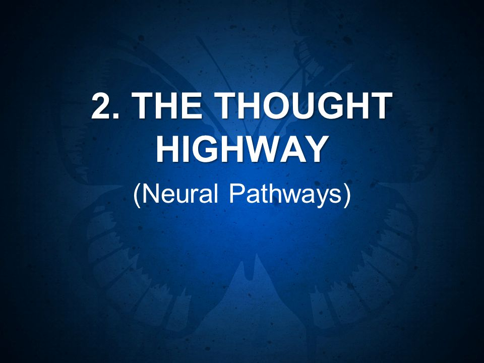 2. THE THOUGHT HIGHWAY (Neural Pathways)