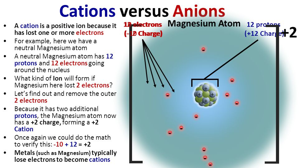 Cations versus Anions A cation is a positive ion because it has lost one or more electrons For example, here we have a neutral Magnesium atom A neutral Magnesium atom has 12 protons and 12 electrons going around the nucleus What kind of Ion will form if Magnesium here lost 2 electrons.