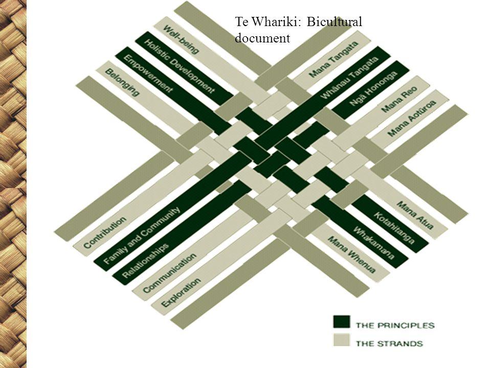 Te Whariki: Bicultural document