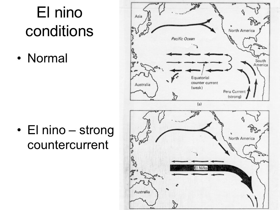 El nino conditions Normal El nino – strong countercurrent