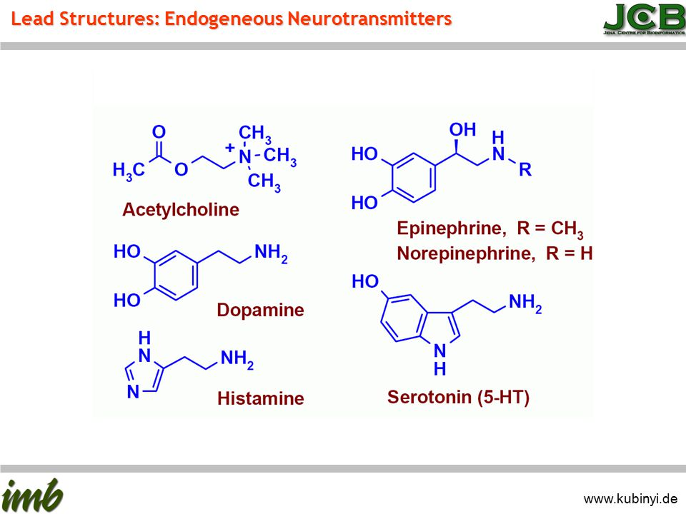Lead Structures: Endogeneous Neurotransmitters www.kubinyi.de