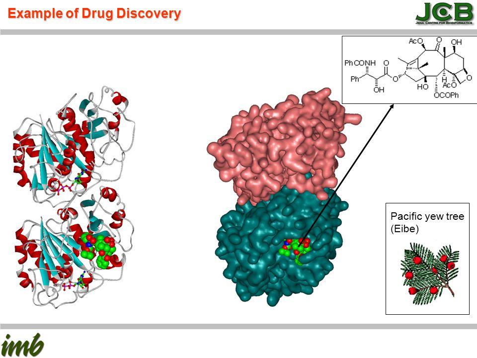 The Future: Pharmagenomics and Personalized Medicine www.kubinyi.de
