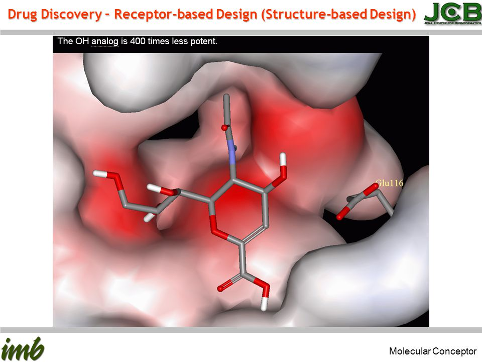 Drug Discovery – Receptor-based Design (Structure-based Design) Molecular Conceptor