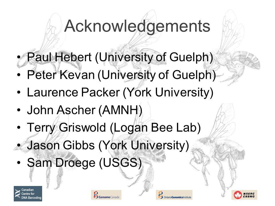 Acknowledgements Paul Hebert (University of Guelph) Peter Kevan (University of Guelph) Laurence Packer (York University) John Ascher (AMNH) Terry Gris