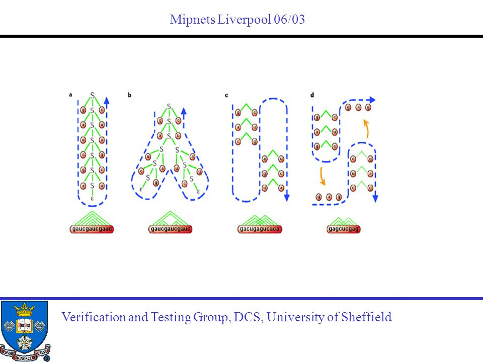 Mipnets Liverpool 06/03 Verification and Testing Group, DCS, University of Sheffield