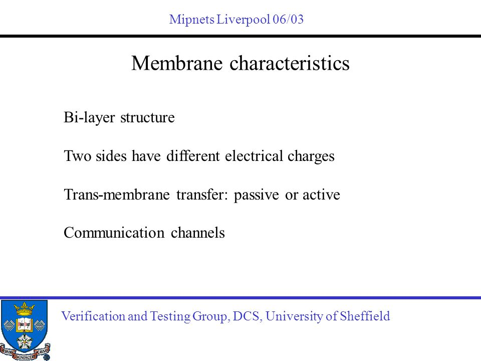 Mipnets Liverpool 06/03 Membrane characteristics Verification and Testing Group, DCS, University of Sheffield Bi-layer structure Two sides have differ