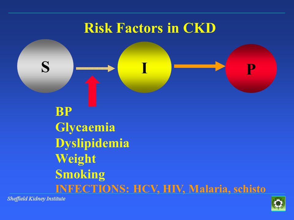 Sheffield Kidney Institute S I P Risk Factors in CKD BP Glycaemia Dyslipidemia Weight Smoking INFECTIONS: HCV, HIV, Malaria, schisto