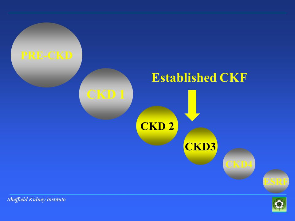 Sheffield Kidney Institute PRE-CKD CKD 1 CKD 2 CKD3 ESRF CKD4 Established CKF